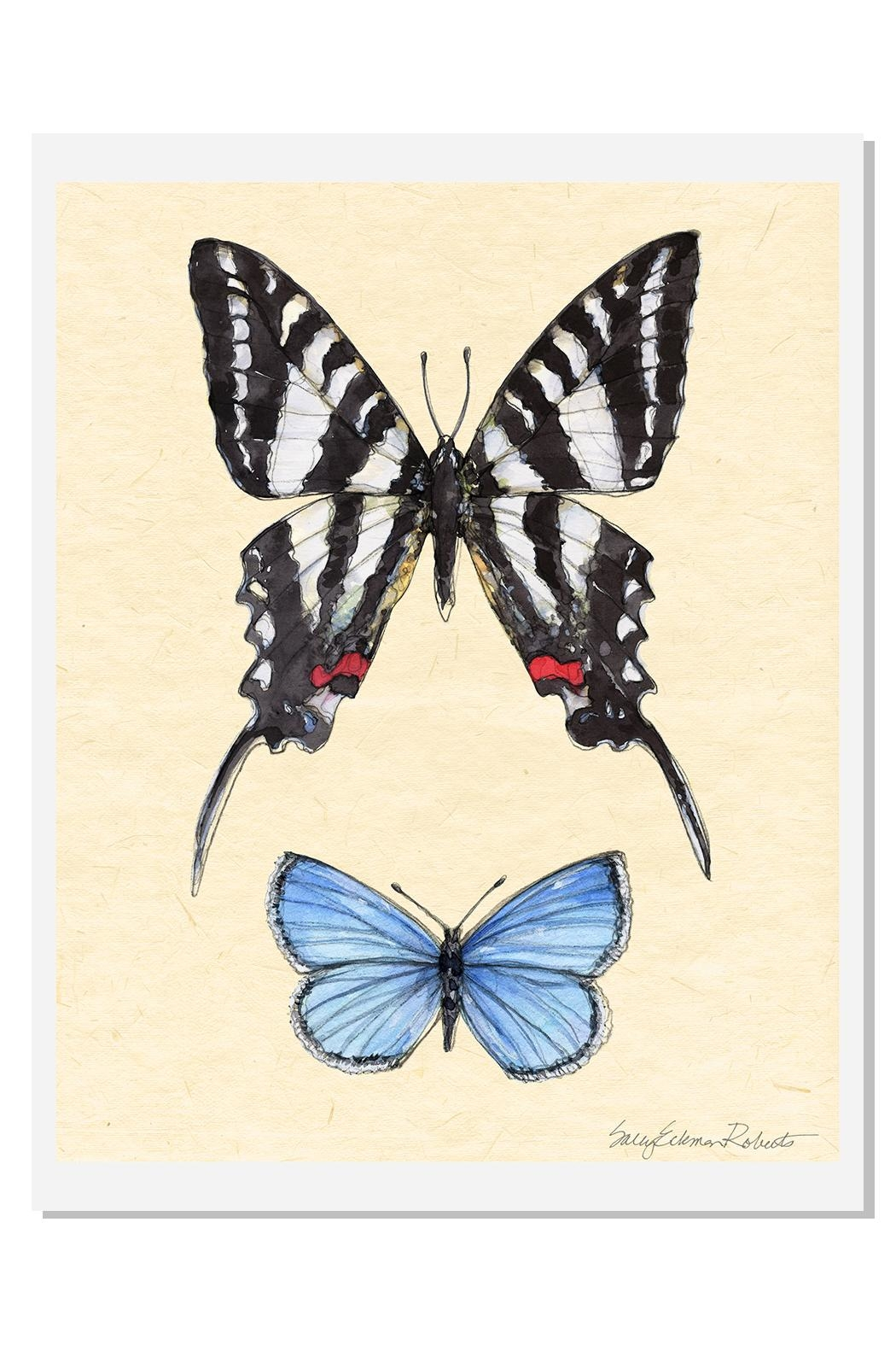 Sally Eckman Roberts Field Guide Butterfly4 - Main Image