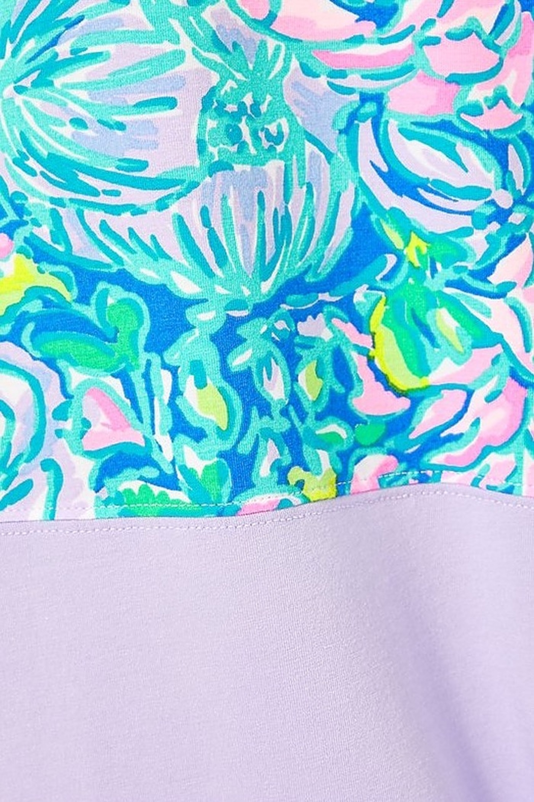Lilly Pulitzer  Finn Top - Back Cropped Image