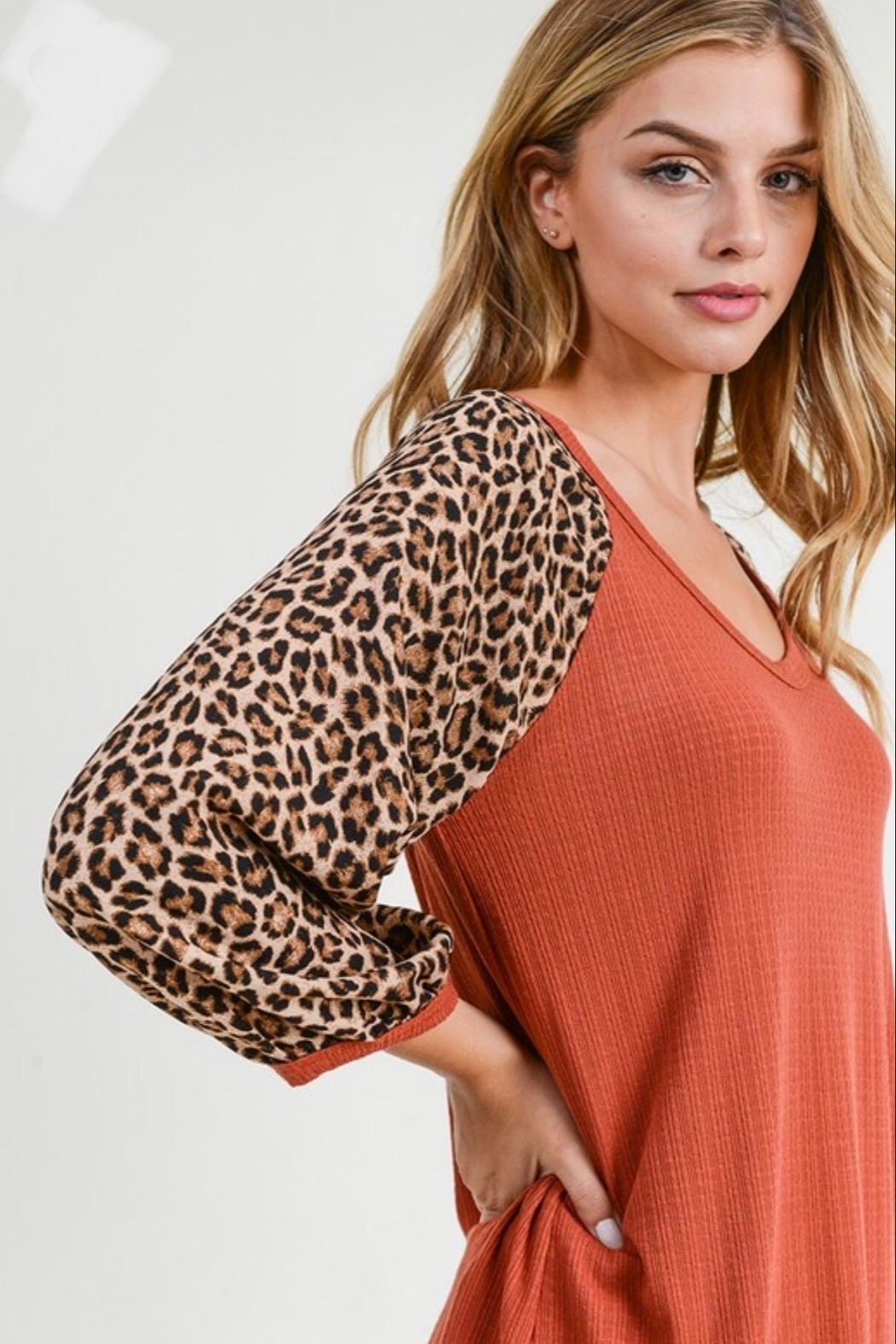 First Love Leopard Sleeve Top - Side Cropped Image