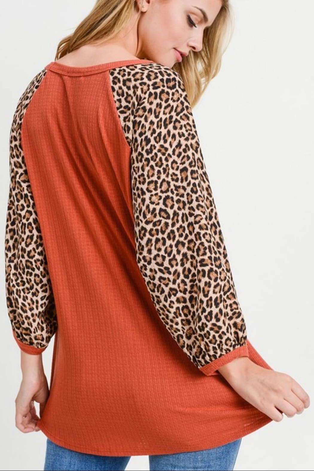 First Love Leopard Sleeve Top - Back Cropped Image