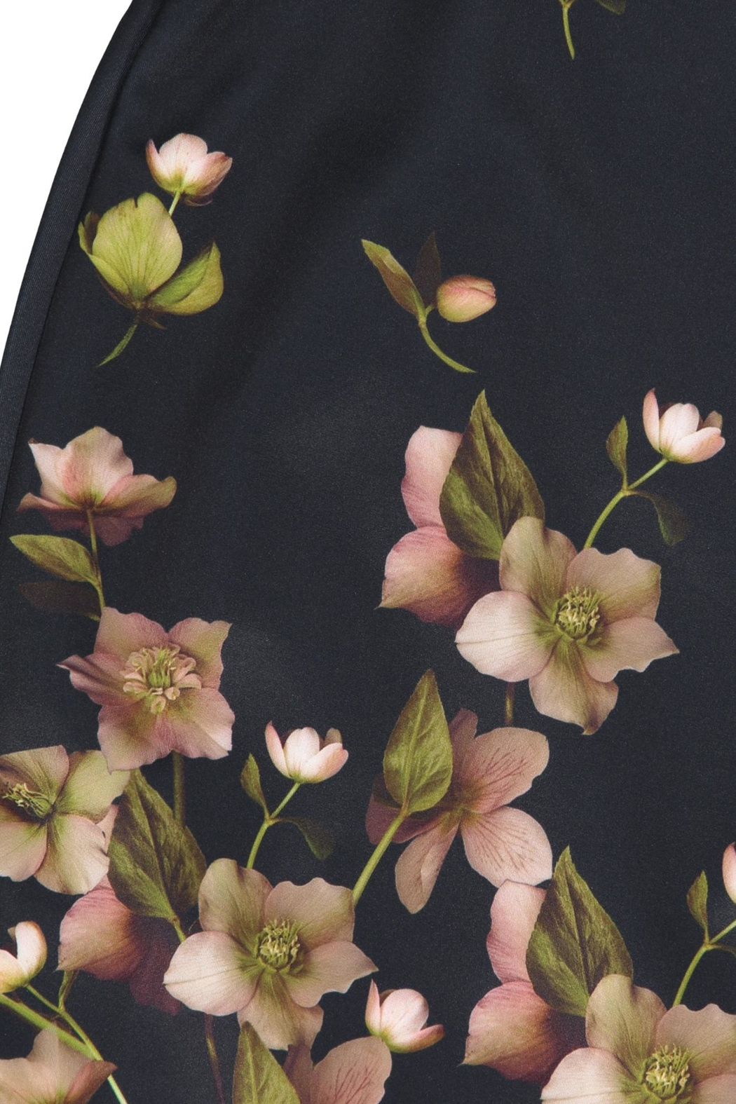 Ted Baker Fitted Floral Dress - Side Cropped Image