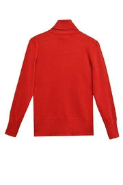 Cable & Gauge Fitted Turtleneck - Front full body