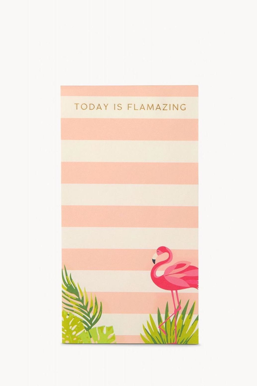 Spartina 449 Flamazing Notepad - Main Image