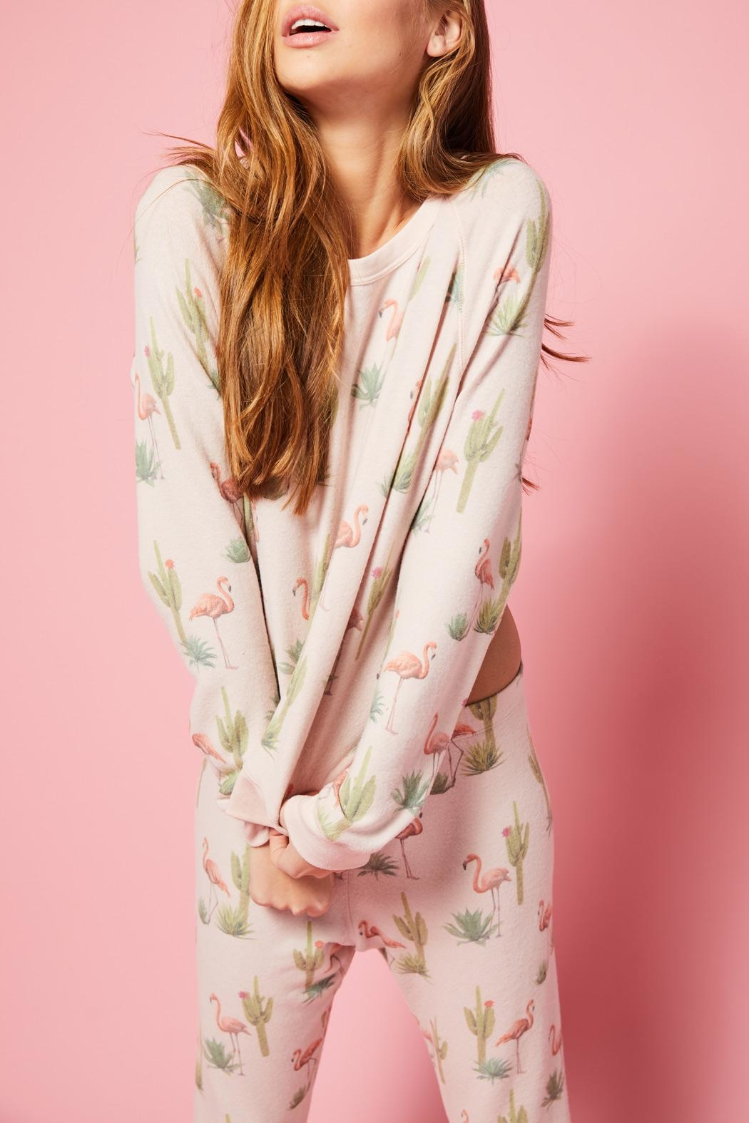 All Things Fabulous Flamingo Cozy Jumper - Front Full Image