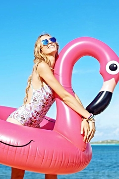 BigMouth Inc Flamingo Pool Float - Product List Image