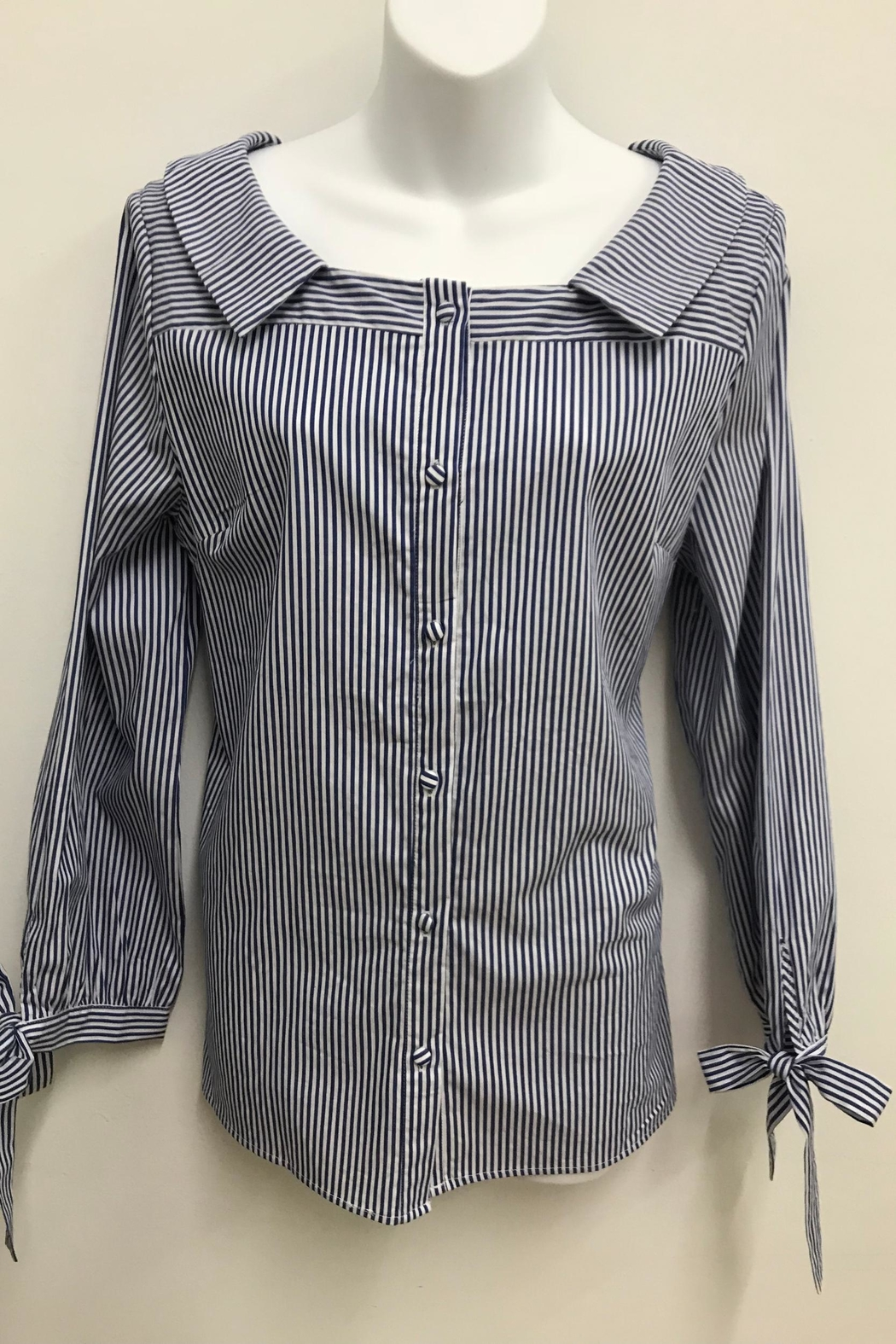 Flora Ashley Striking Stripes Blouse - Front Cropped Image
