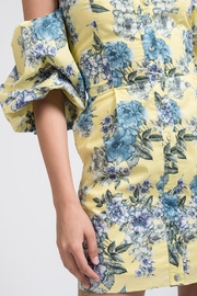 J.O.A. Floral Balloon-Sleeve Dress - Product Mini Image