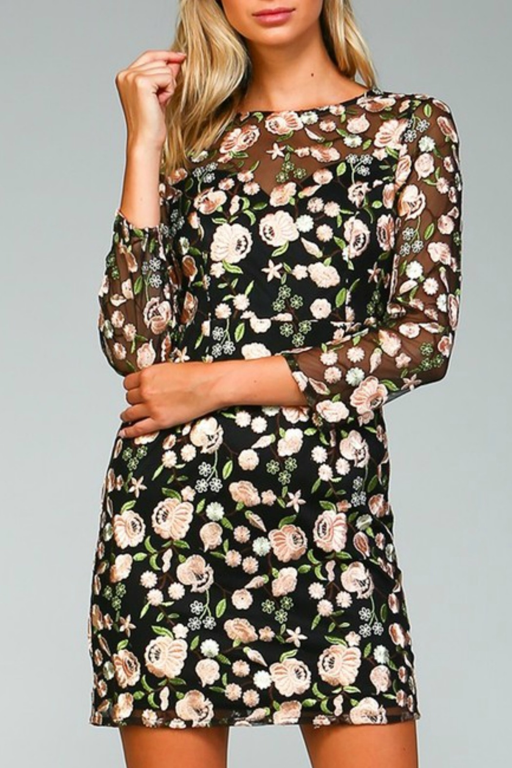 Minuet Floral Embroidered Dress - Main Image