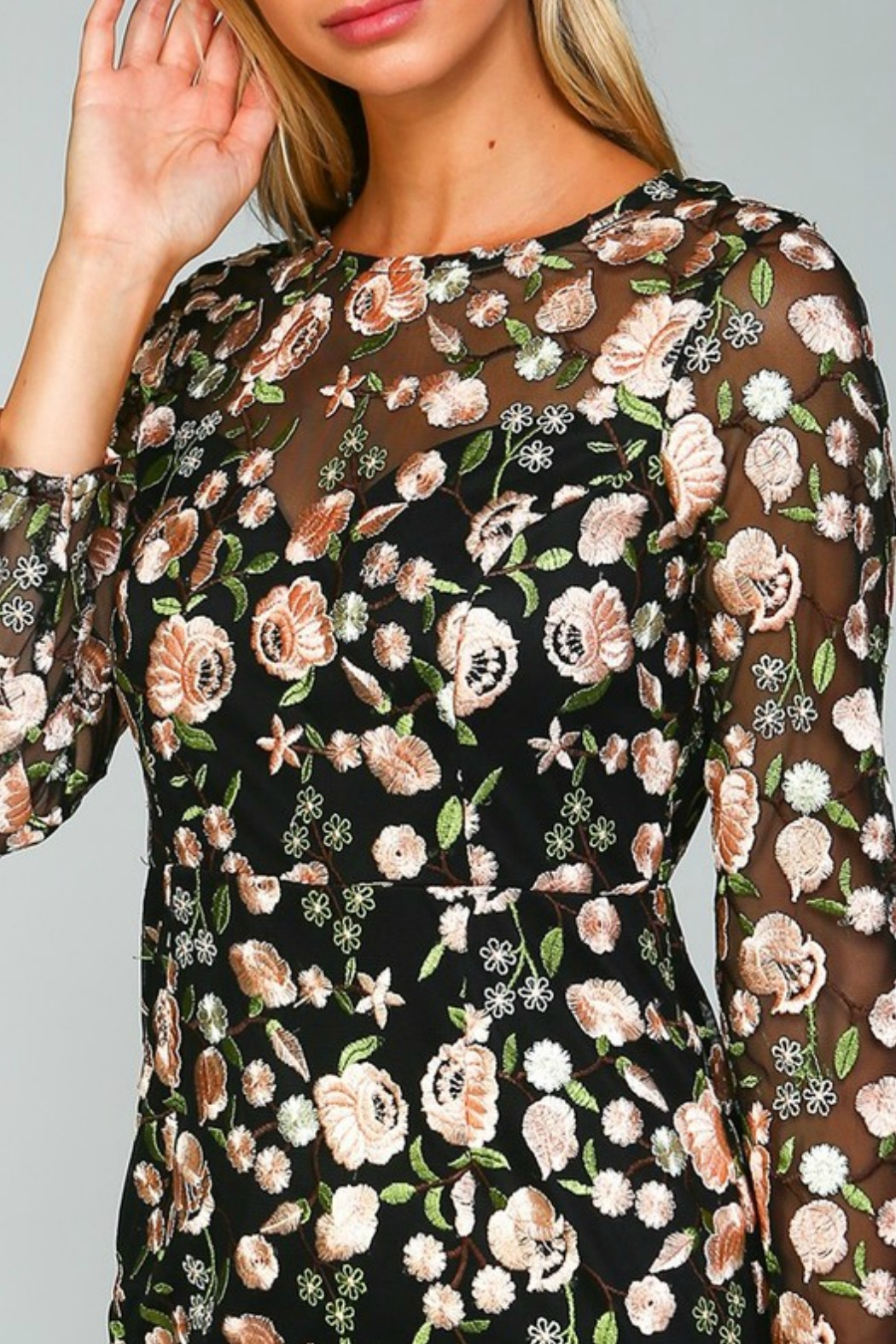 Minuet Floral Embroidered Dress - Side Cropped Image