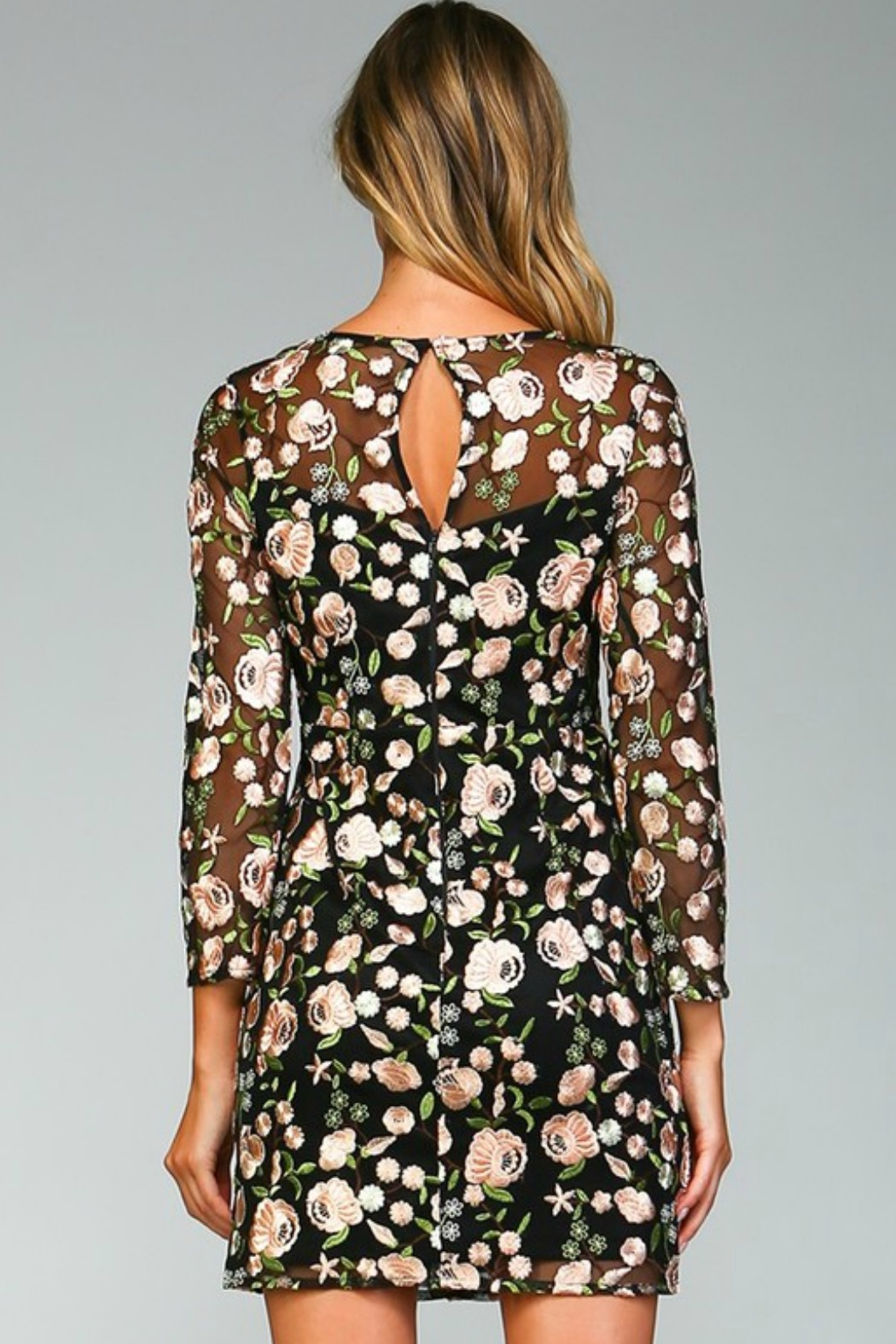 Minuet Floral Embroidered Dress - Back Cropped Image