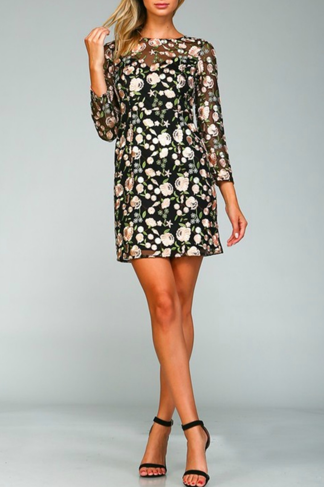 Minuet Floral Embroidered Dress - Front Full Image