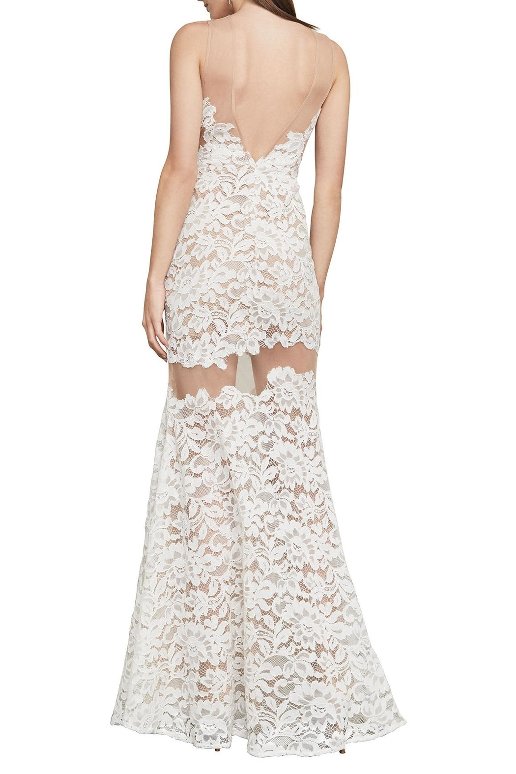 BCBG Max Azria Floral Lace Gown - Side Cropped Image