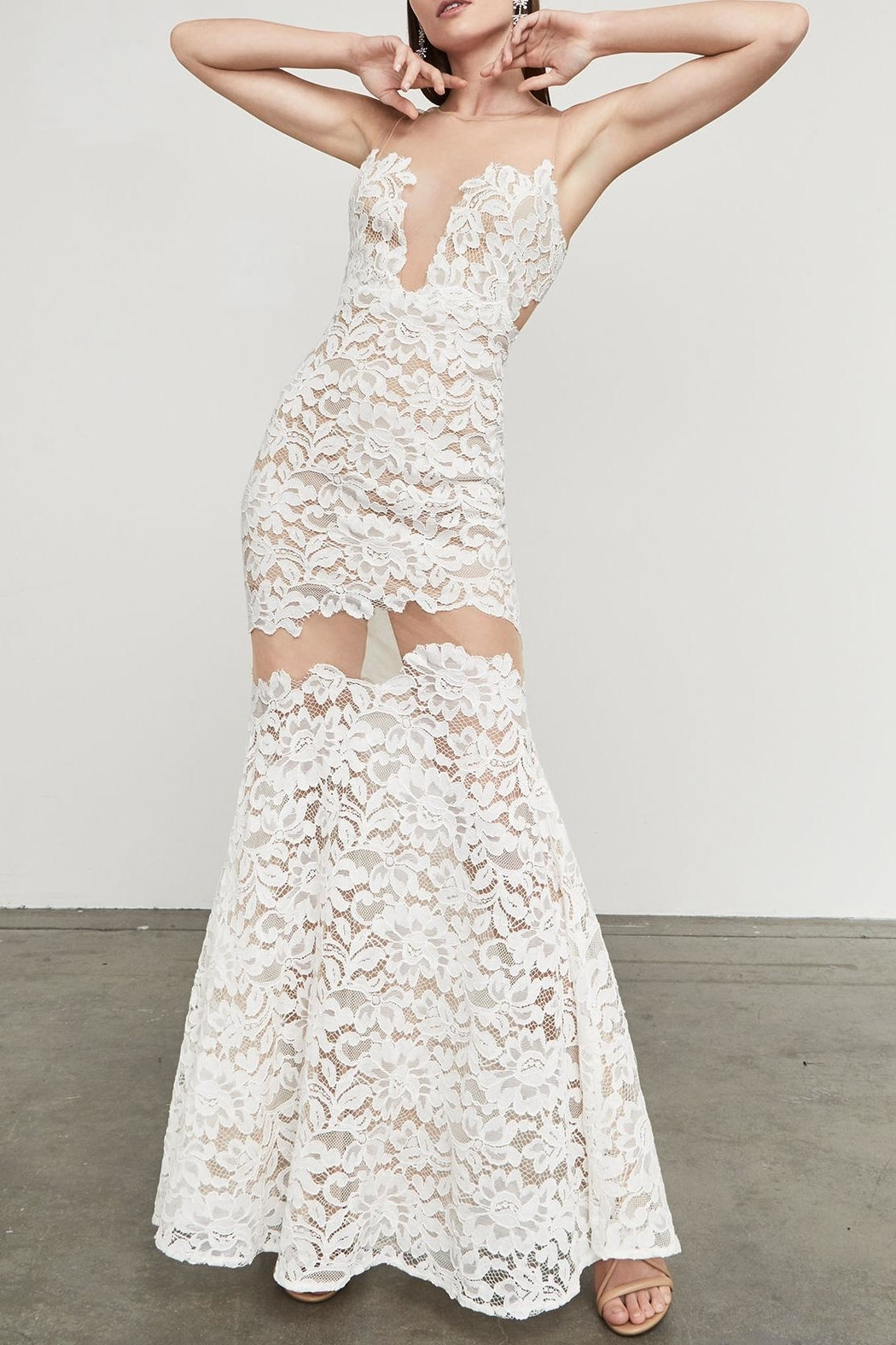 BCBG Max Azria Floral Lace Gown - Front Cropped Image