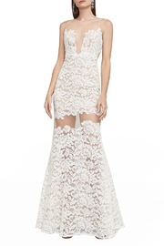 BCBG MAXAZRIA Floral Lace Gown - Front full body