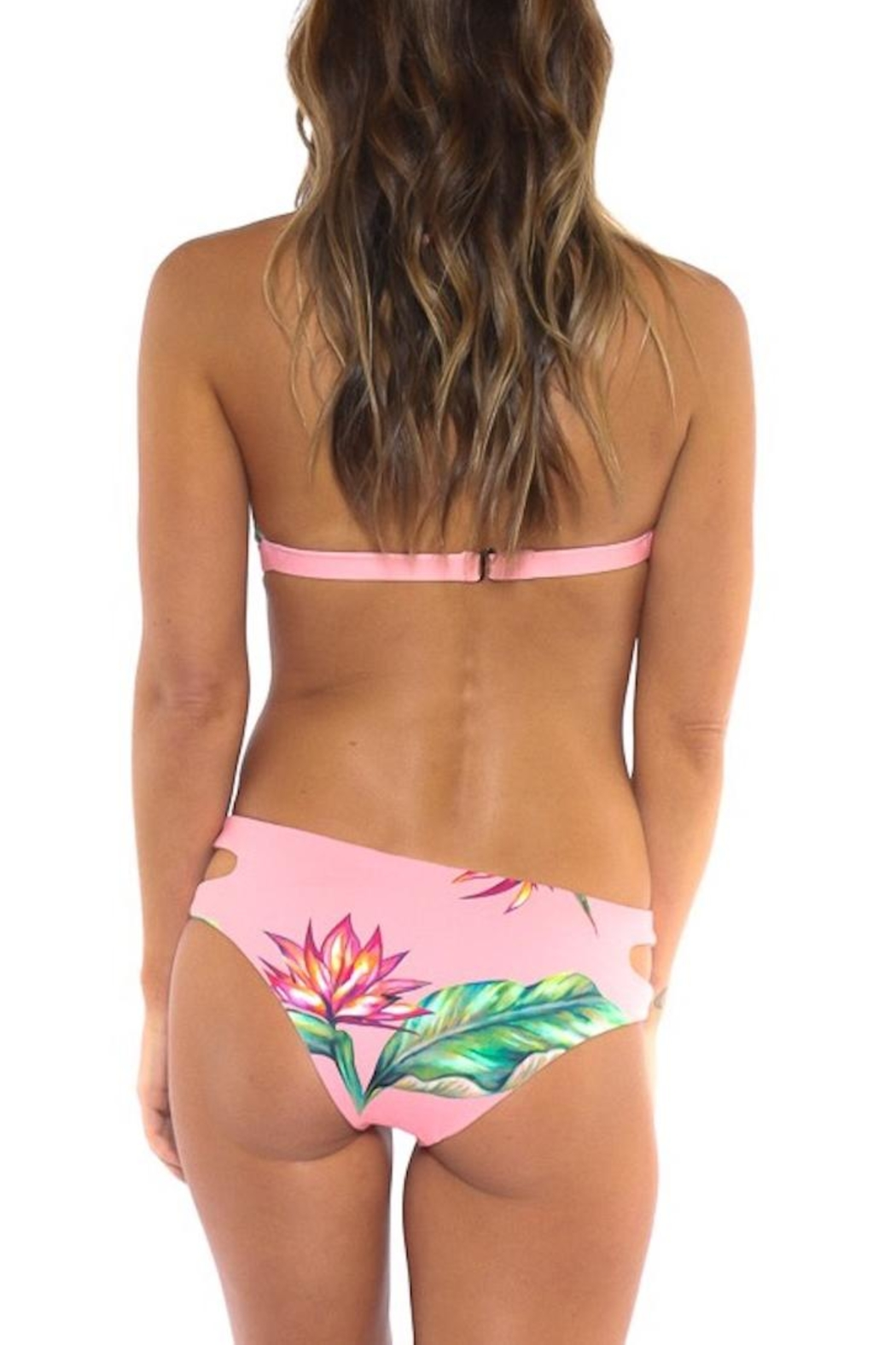 Azure Swimwear Floral Maldives Top - Back Cropped Image