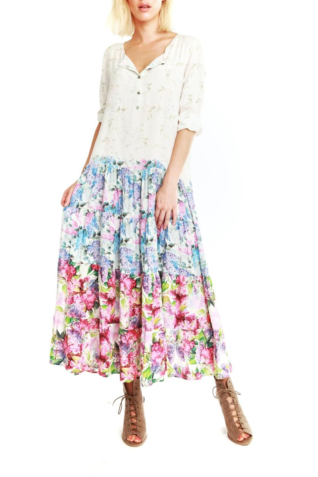 Aratta Floral Maxi Dress - Front Cropped Image