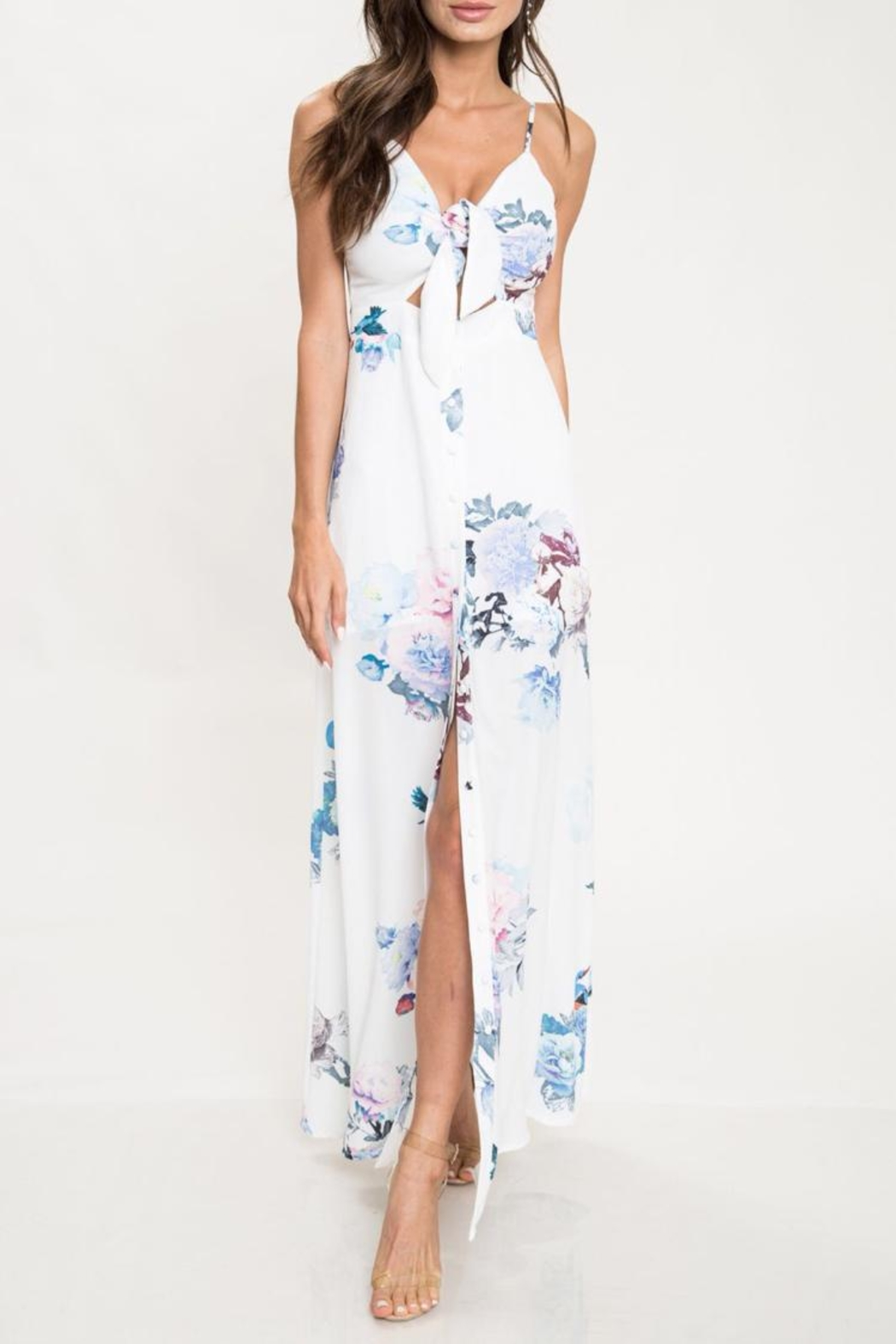 Latiste Floral Maxi Dress - Main Image