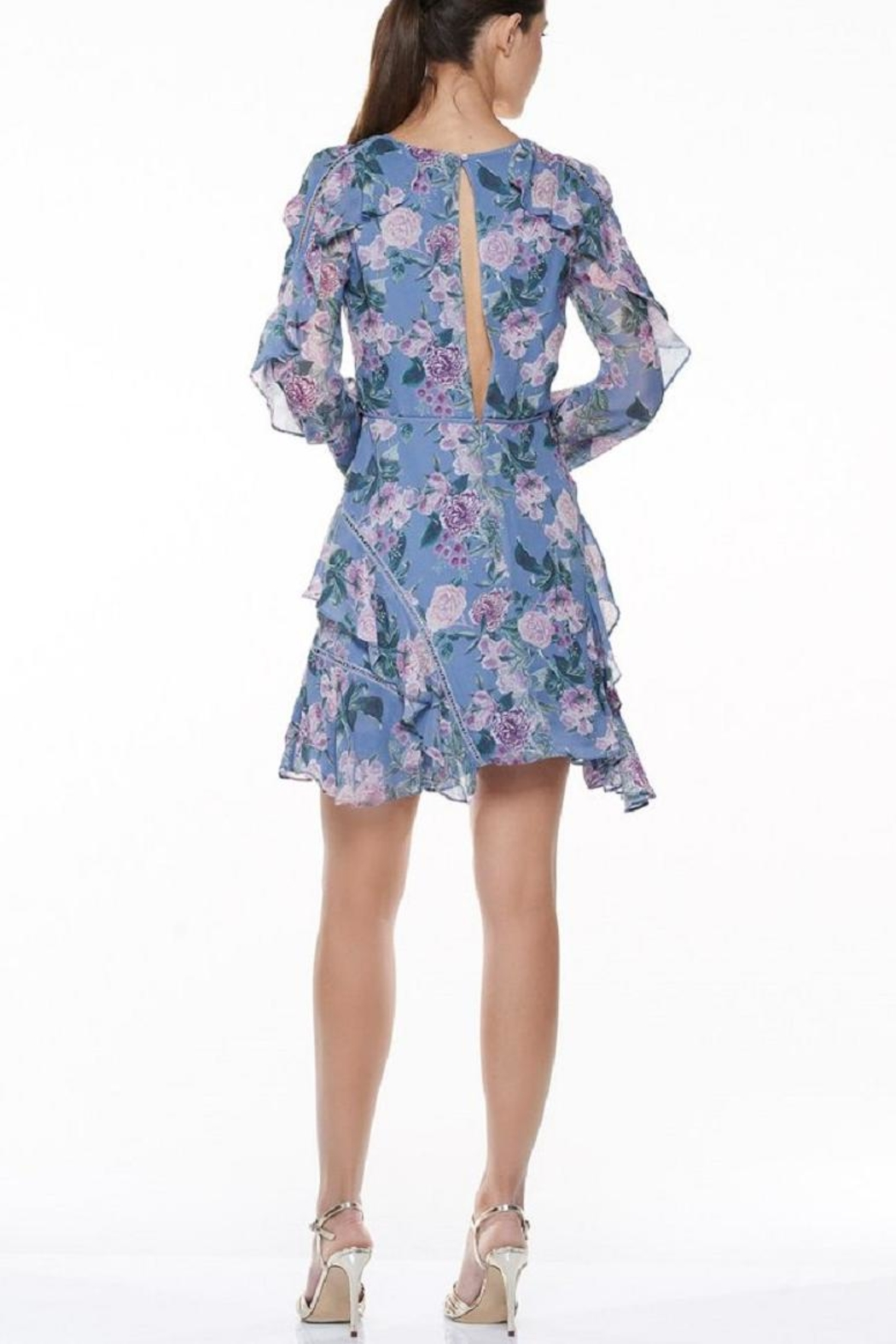 Talulah Floral Mini Dress - Side Cropped Image