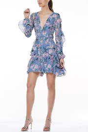 Talulah Floral Mini Dress - Front cropped