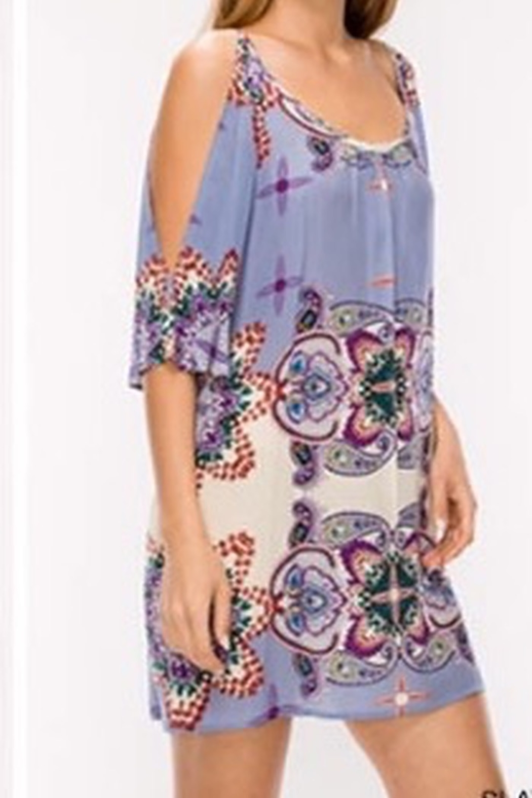 Glam Floral paisley dress - Front Full Image