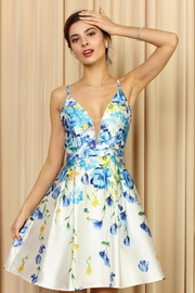 Soieblu Floral Print Dress - Product Mini Image