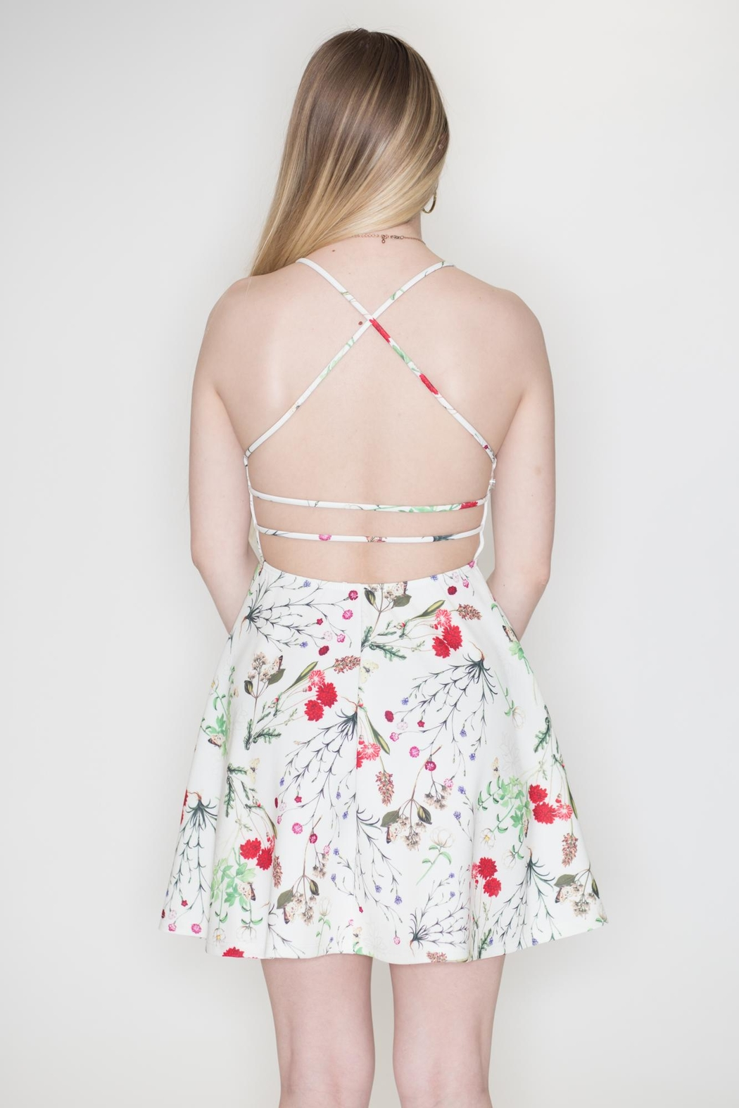 blue blush Floral Skater Dress - Back Cropped Image