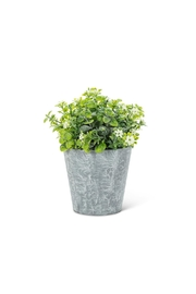 Abbott Collection Flowering Faux Plant - Product Mini Image