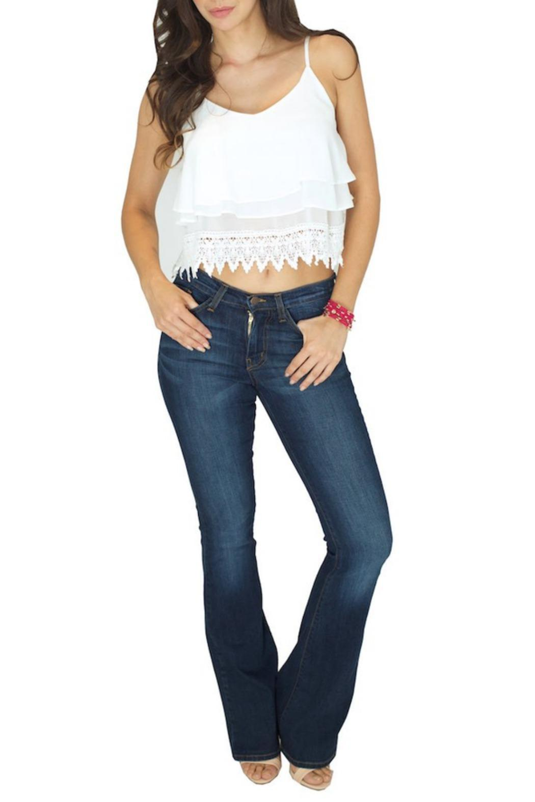 Flying Monkey High Waist Denim - Front Cropped Image