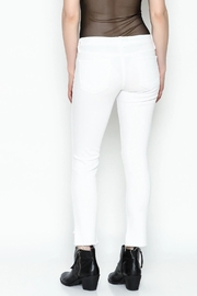 Flying Monkey Skinny Jeans - Back cropped