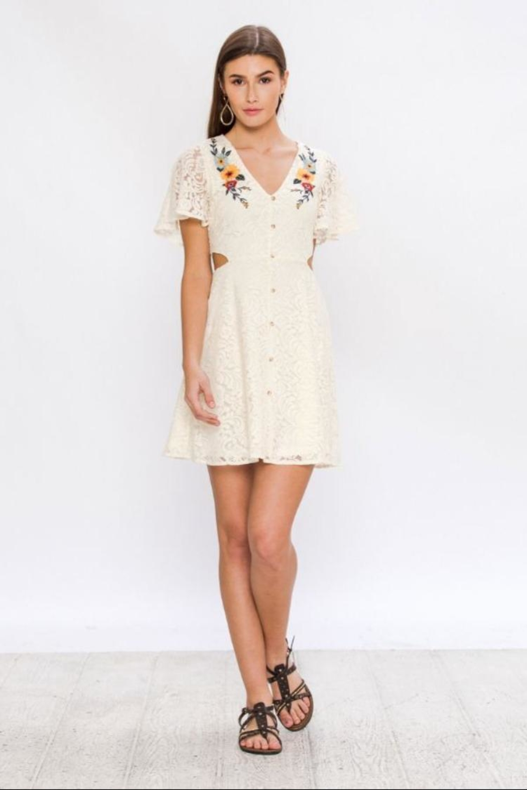 Flying Tomato Embroidered Lace Dress - Main Image