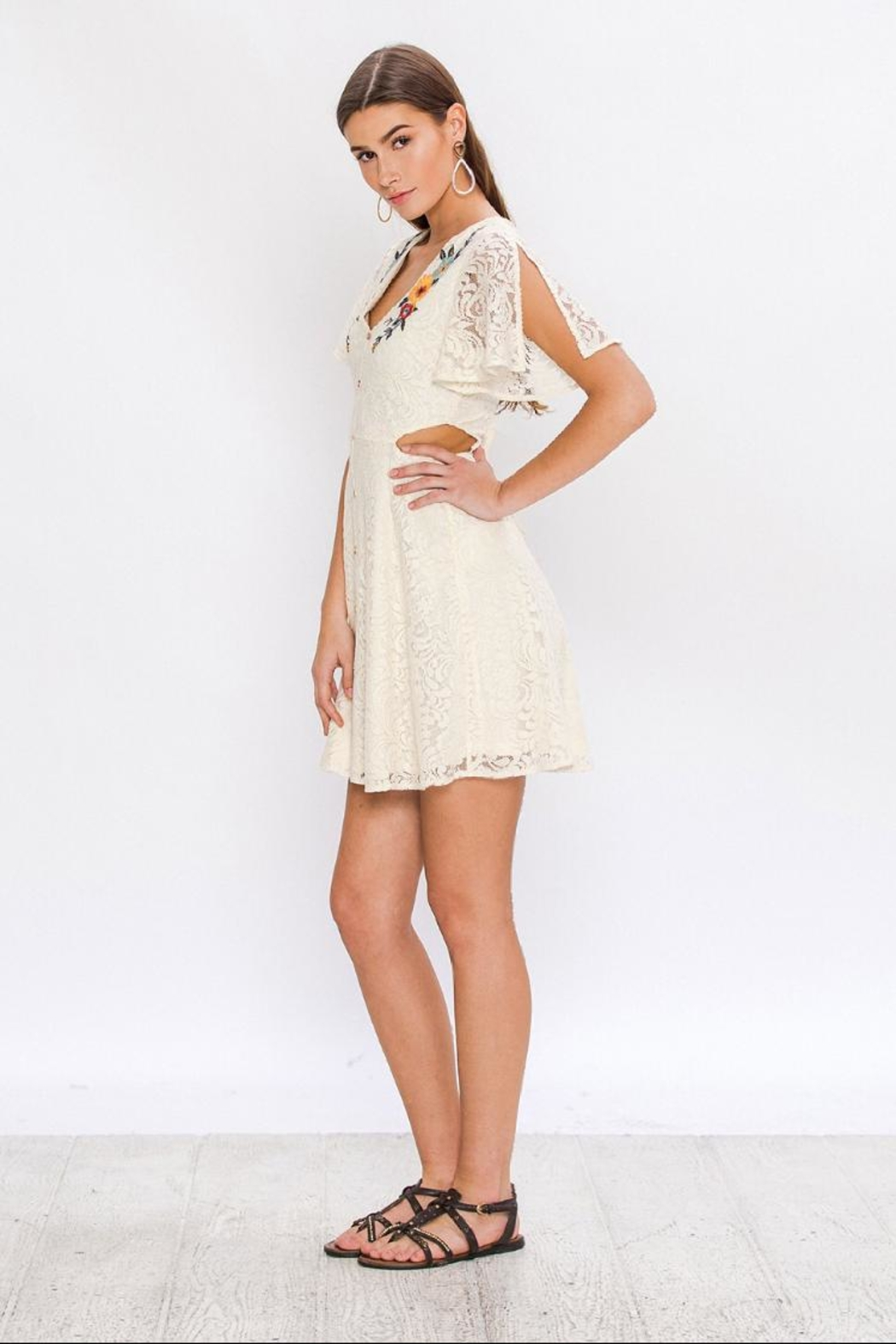 Flying Tomato Embroidered Lace Dress - Front Full Image