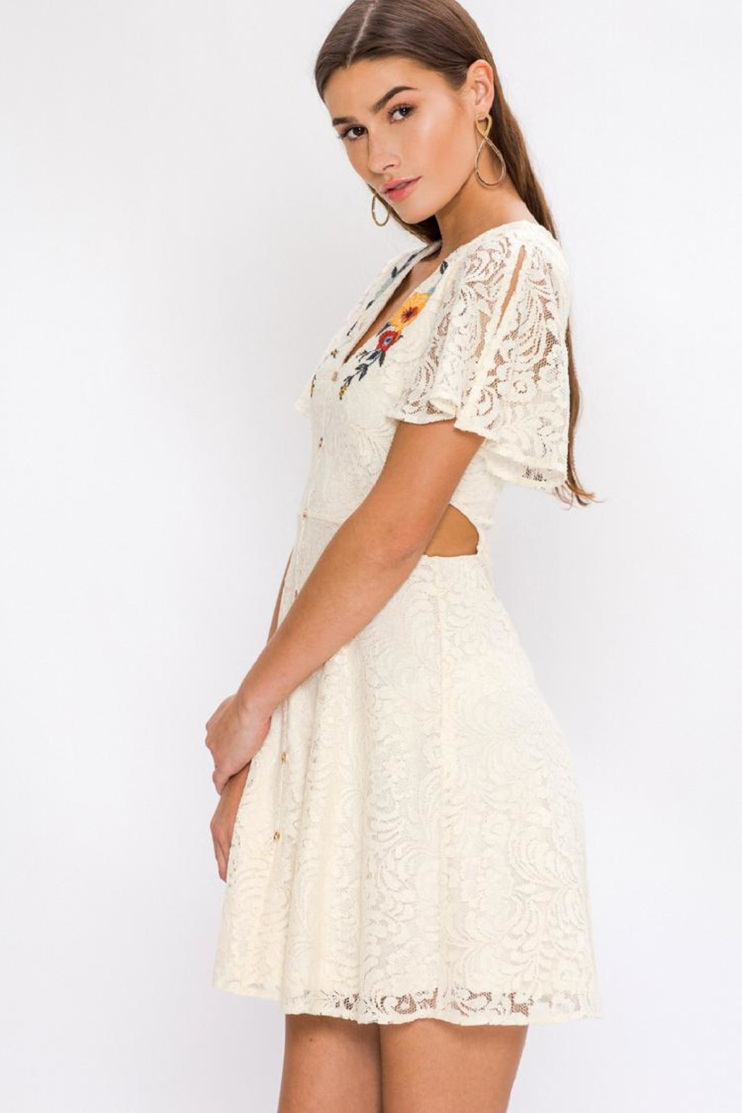 Flying Tomato Embroidered Lace Dress - Back Cropped Image
