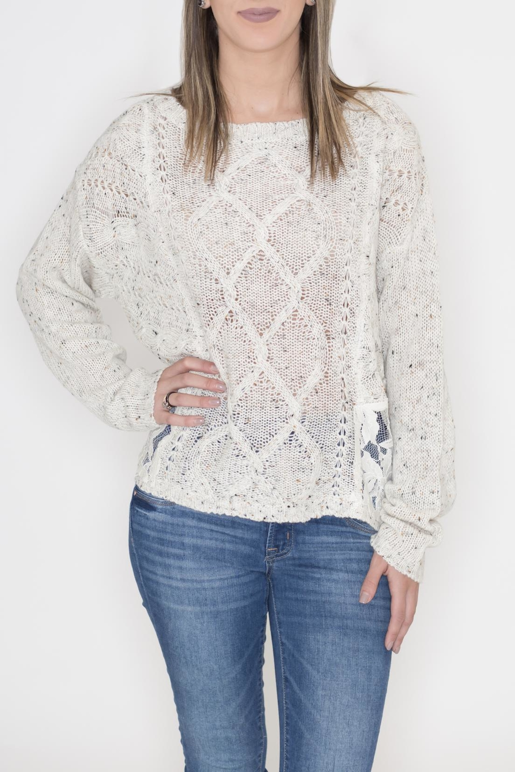 Flying Tomato Lace Panel Sweater - Front Cropped Image
