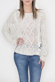 Flying Tomato Lace Panel Sweater - Front cropped