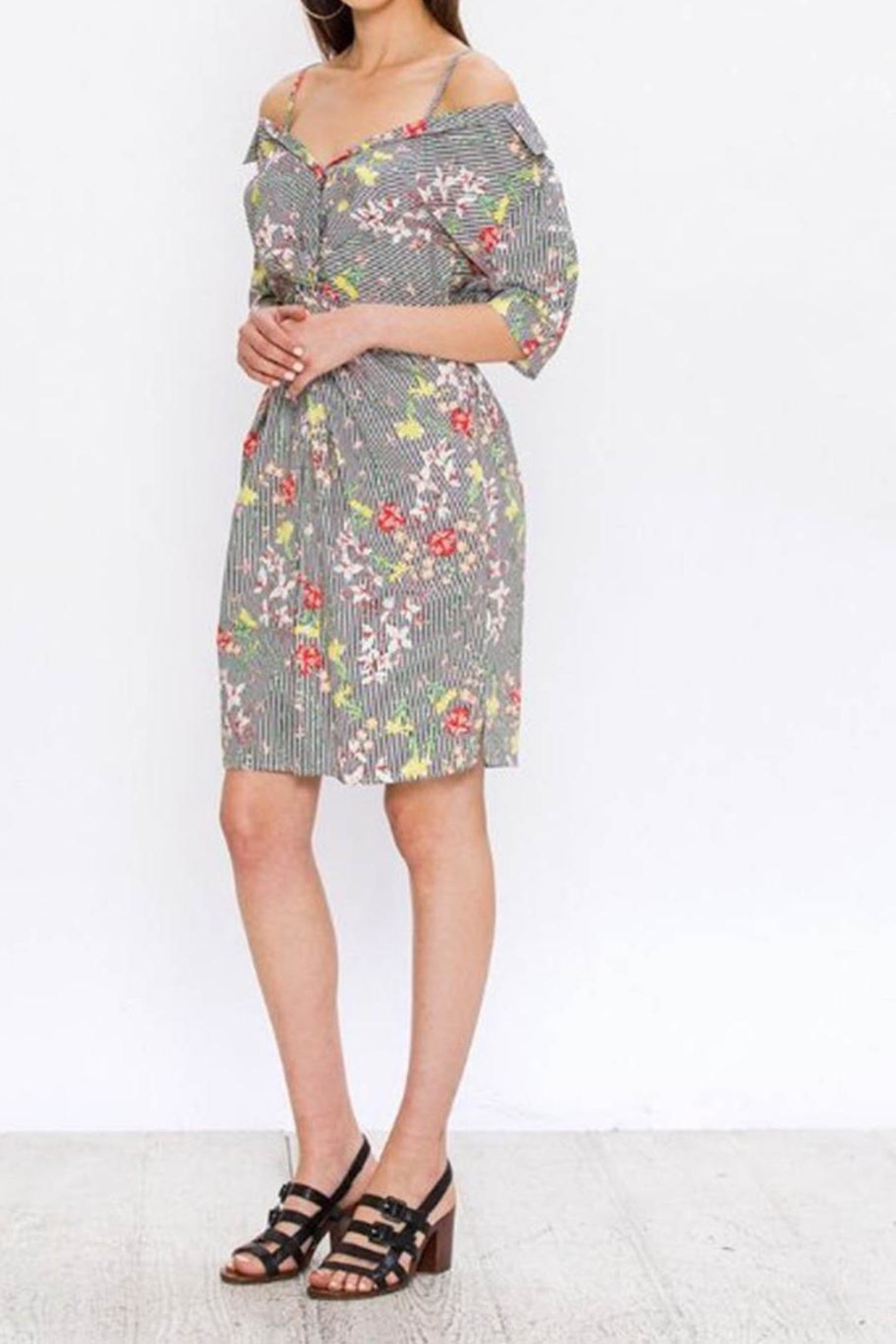 Flying Tomato Pinstriped Print Dress - Front Full Image