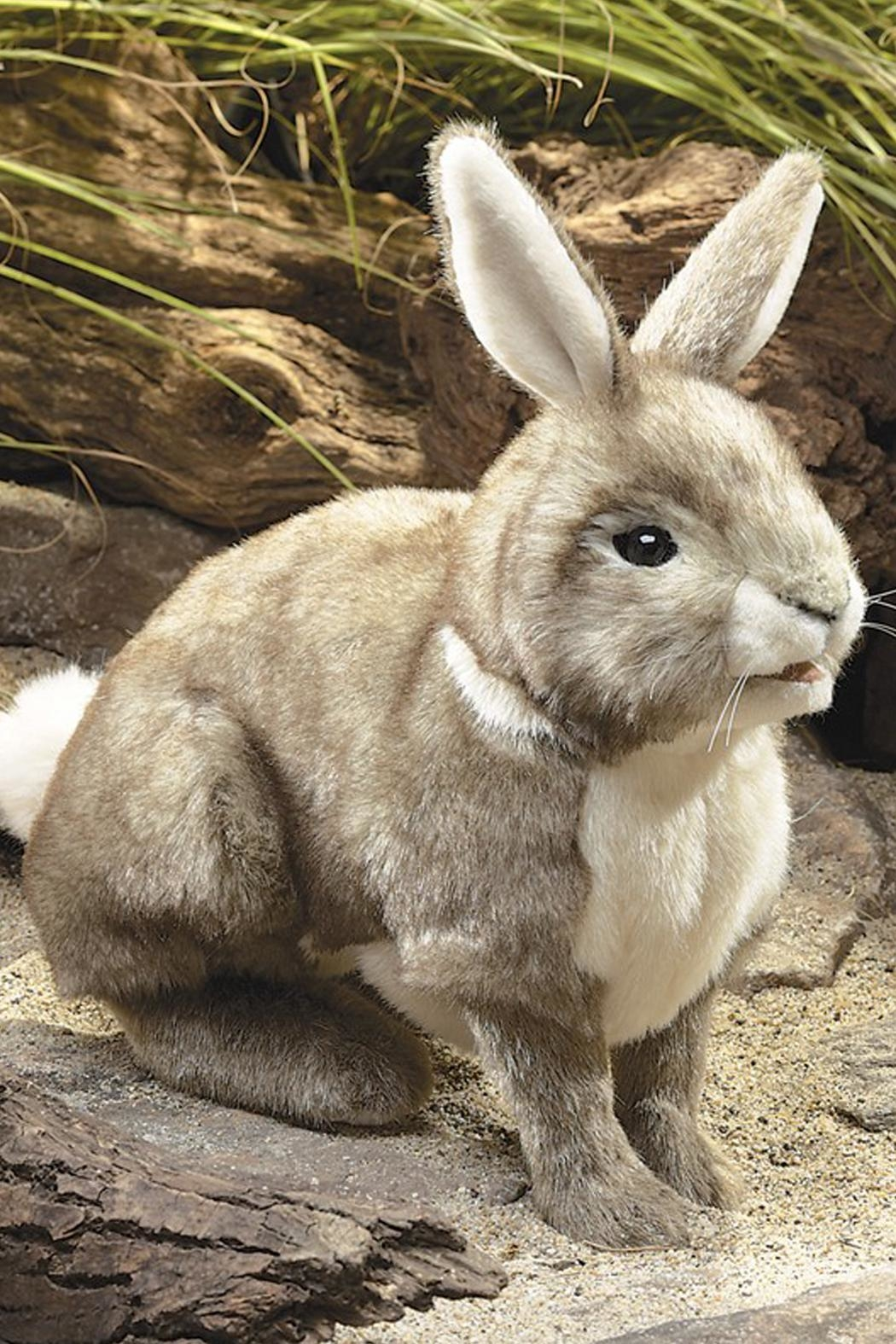 Folkmanis Cottontail-Rabbit Hand Puppet - Side Cropped Image