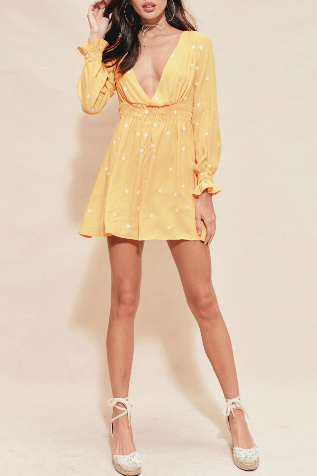 FOR LOVE & LEMONS Chiquita Embroidered Dress - Main Image