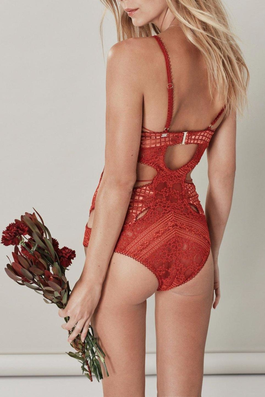 FOR LOVE & LEMONS Etienne Lace Bodysuit - Front Full Image