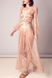 FOR LOVE & LEMONS Glitters Maxi Dress - Product Mini Image