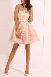 Forever Unique Blush Sequined Dress - Product Mini Image