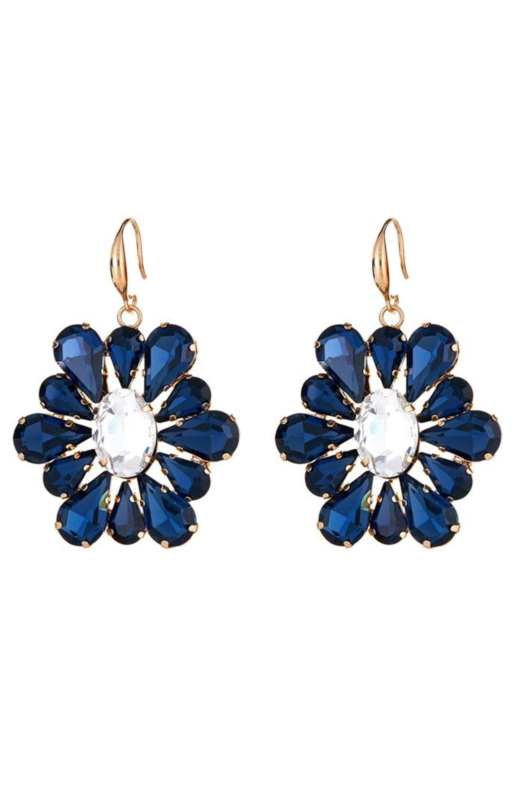 Fornash August Earrings - Front Cropped Image