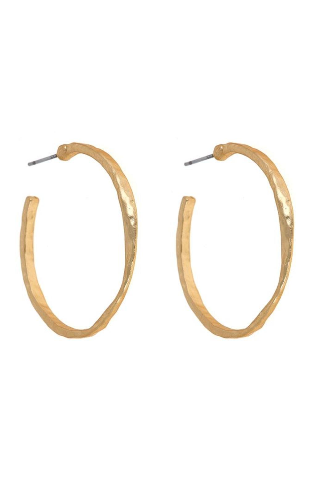 Fornash Chester Hoop Earrings - Front Cropped Image