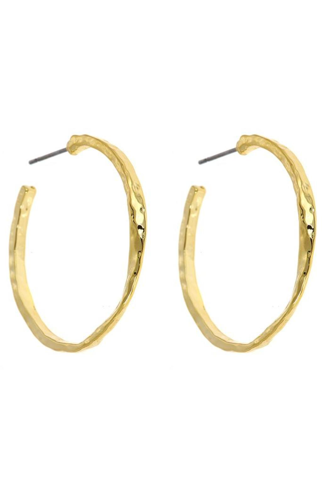 Fornash Chester Hoop Earrings - Main Image
