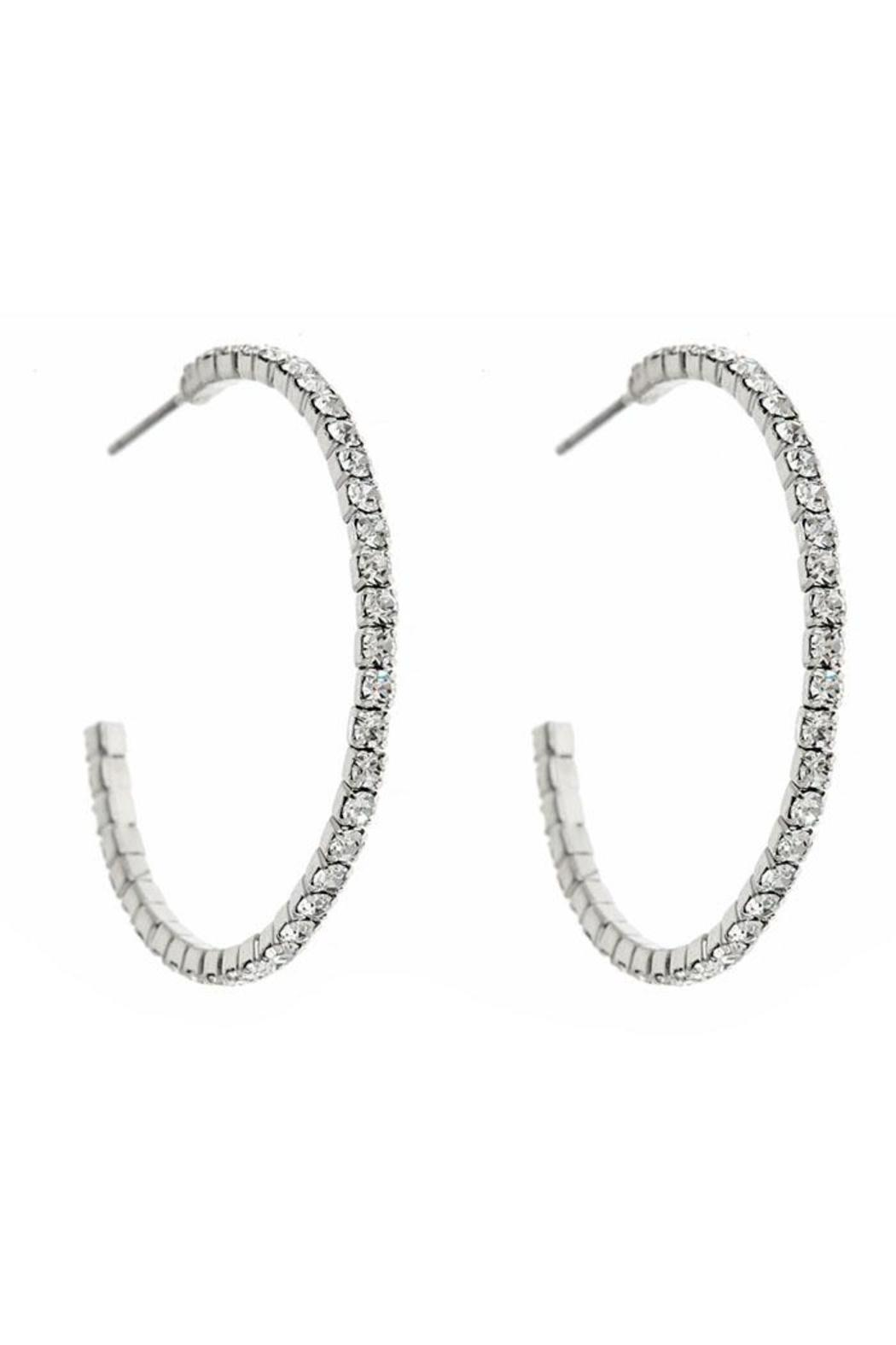 Fornash Diana Earrings - Front Cropped Image