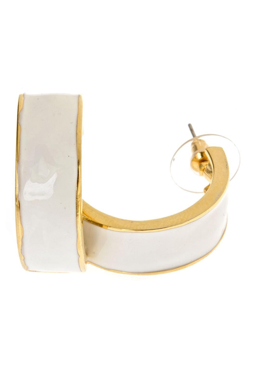 Fornash Enamel Hoop Earrings Front Cropped Image