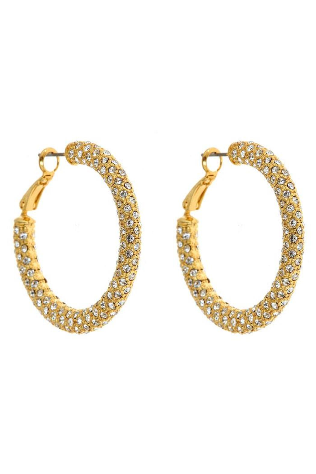 Fornash Eve Hoop Earrings - Front Cropped Image