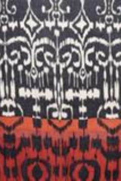 Kinross Cashmere FRAMED IKAT PRINT SCARF - Alternate List Image
