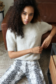 Greylin Francis Cozy Marled Knit Short Sleeve Knit Top - Front cropped