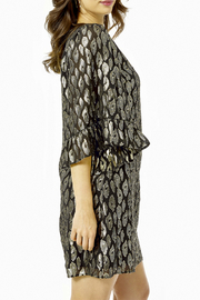 Lilly Pulitzer  Francis Silk Dress - Front full body