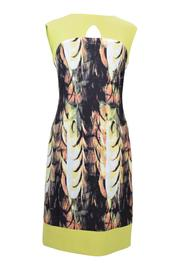 Frank Lyman Abstract Citrus Dress - Front cropped